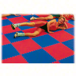 Vario-Top exercise mat, LxWxH 100x100x2.5 cm, red