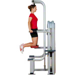 ERGO-FIT Pull Up / Dip 4000 med