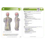physiotherapy cards - Physiology for physiotherapists, 415 cards