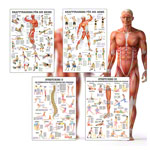 Mini-Poster Booklet Fitness and Weight training, LxB 34x24 cm, 12 posters