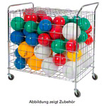 Ball carts standard, mobile
