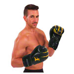 Bruce Lee boxing glove, 10 ounces, pair