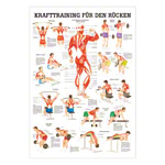 Mini Poster - Strength training for your back -, LxW 34x24 cm