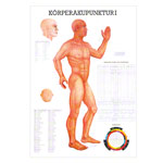 Mini-Poster - body acupuncture I - , LxW 34x24 cm