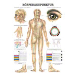 Mini-poster - acupuncture - , L x W 34x24 cm