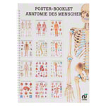 Mini poster booklet - Human anatomy - , LxW 34x24 cm, 12 posters
