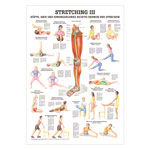 Mini-poster - stretching III - L x W 34x24 cm