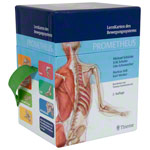 PROMETHEUS Anatomy Flashcards about musculoskeletal system, 460 cards