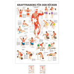 Wall chart - Strength training for your back -, LxW 100x70 cm