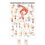 Wall chart - Strength training for your shoulder -, LxW 100x70 cm
