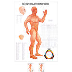 Wall chart - body acupuncture I - , LxW 100x70 cm