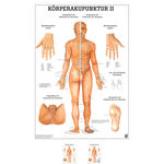 Wall chart - body acupuncture II, - LxW 100x70 cm